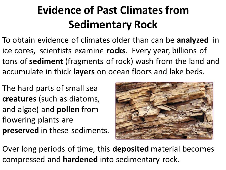 Evidence of Past Climates from Sedimentary Rock To obtain evidence of climates older than can be analyzed in ice cores, scientists examine rocks. Ever