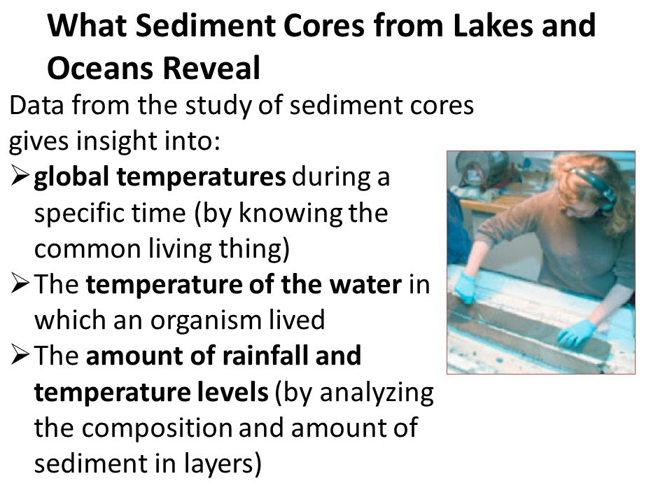 What Sediment Cores from Lakes and Oceans Reveal Data from the study of sediment cores gives insight into:  global temperatures during a specific tim