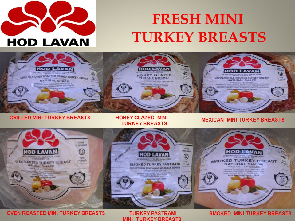 FRESH MINI TURKEY BREASTS GRILLED MINI TURKEY BREASTS HONEY GLAZED MINI TURKEY BREASTS MEXICAN MINI TURKEY BREASTS OVEN ROASTED MINI TURKEY BREASTS TURKEY PASTRAMI MINI TURKEY BREASTS SMOKED MINI TURKEY BREASTS