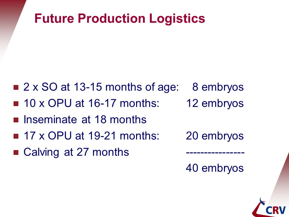Future Production Logistics  2 x SO at 13-15 months of age: 8 embryos  10 x OPU at 16-17 months:12 embryos  Inseminate at 18 months  17 x OPU at 1