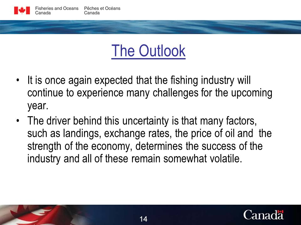 The Outlook It is once again expected that the fishing industry will continue to experience many challenges for the upcoming year.