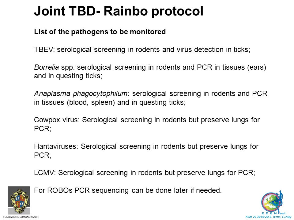 Joint TBD- Rainbo protocol List of the pathogens to be monitored TBEV: serological screening in rodents and virus detection in ticks; Borrelia spp: se