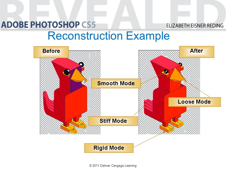 Reconstruction Example © 2011 Delmar Cengage Learning Before After Smooth Mode Loose Mode Stiff Mode Rigid Mode