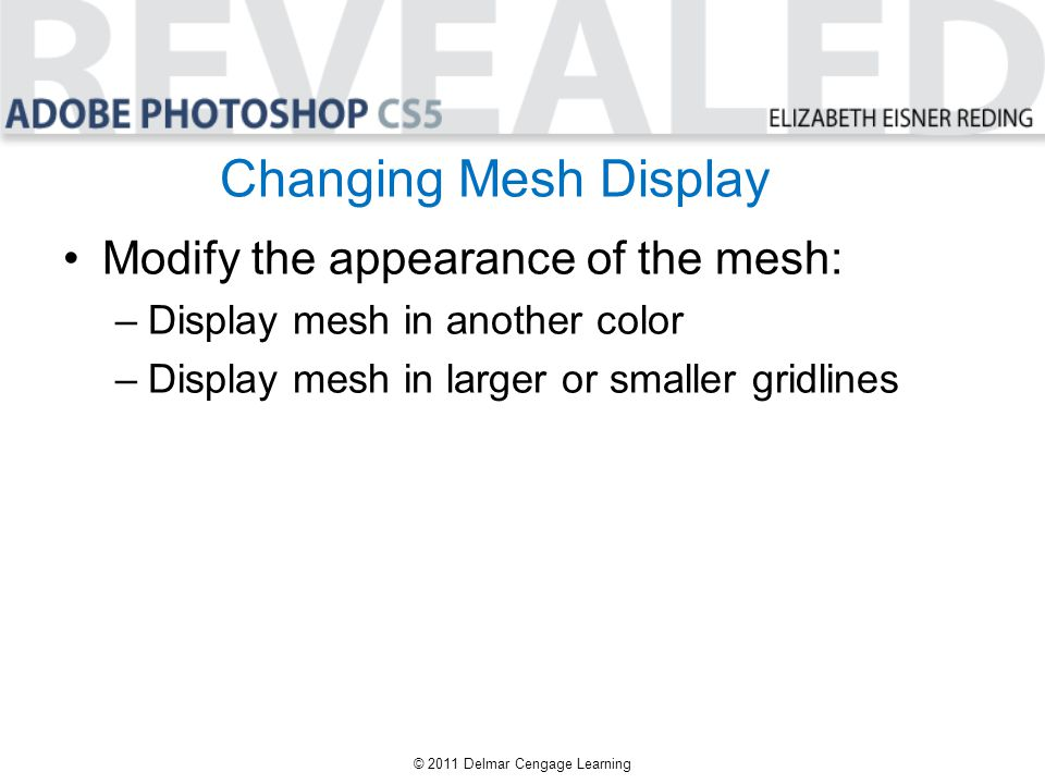Changing Mesh Display Modify the appearance of the mesh: –Display mesh in another color –Display mesh in larger or smaller gridlines © 2011 Delmar Cen
