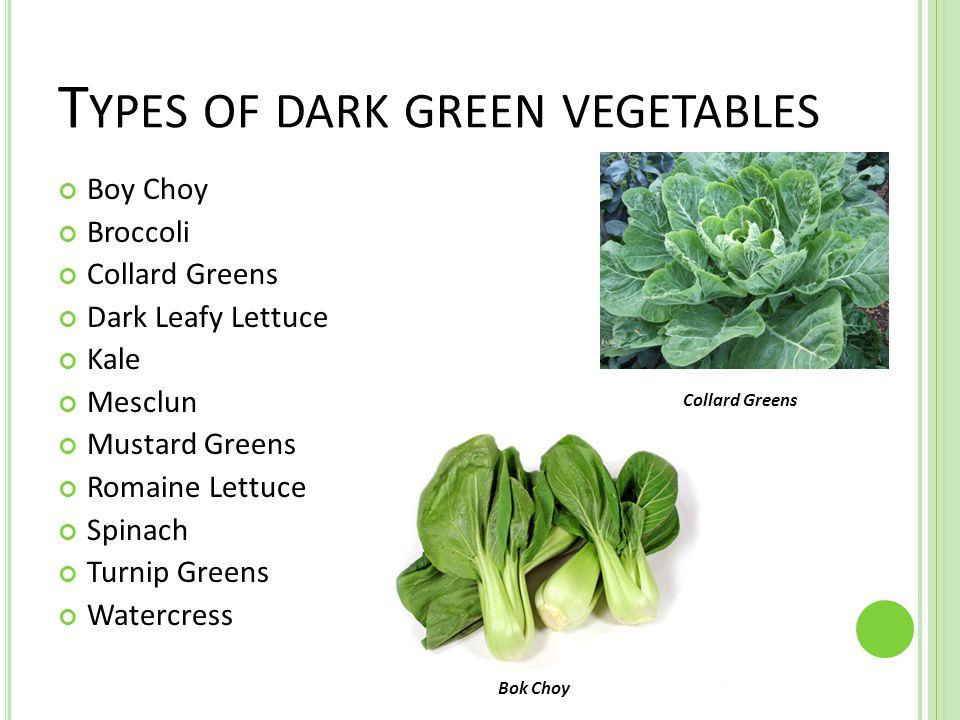 T YPES OF DARK GREEN VEGETABLES Boy Choy Broccoli Collard Greens Dark Leafy Lettuce Kale Mesclun Mustard Greens Romaine Lettuce Spinach Turnip Greens