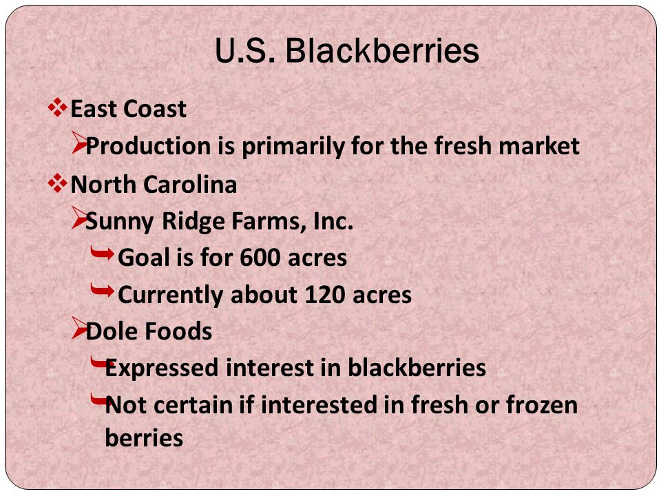 U.S. Blackberries  East Coast  Production is primarily for the fresh market  North Carolina  Sunny Ridge Farms, Inc.  Goal is for 600 acres  Cur
