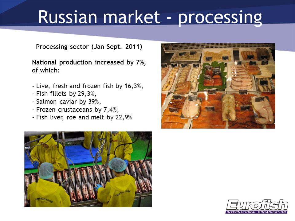 Russian market - processing Processing sector (Jan-Sept. 2011) National production increased by 7%, of which: - Live, fresh and frozen fish by 16,3%,