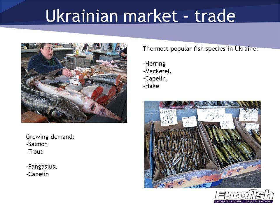 Ukrainian market - trade The most popular fish species in Ukraine: -Herring -Mackerel, -Capelin, -Hake Growing demand: -Salmon -Trout -Pangasius, -Capelin