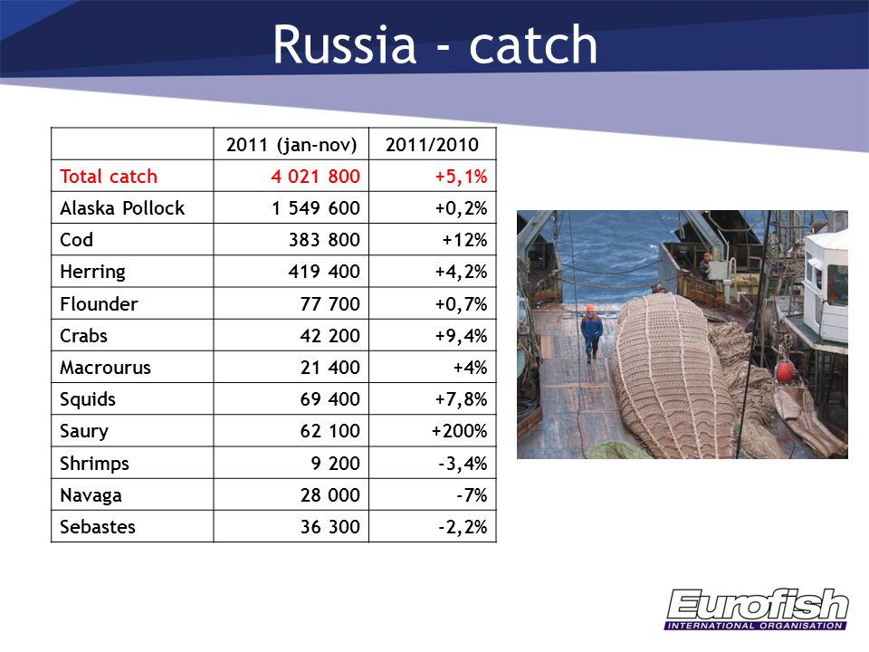 Russia - catch 2011 (jan-nov)2011/2010 Total catch4 021 800+5,1% Alaska Pollock1 549 600+0,2% Cod383 800+12% Herring419 400+4,2% Flounder77 700+0,7% Crabs42 200+9,4% Macrourus21 400+4% Squids69 400+7,8% Saury62 100+200% Shrimps9 200-3,4% Navaga28 000-7% Sebastes36 300-2,2%