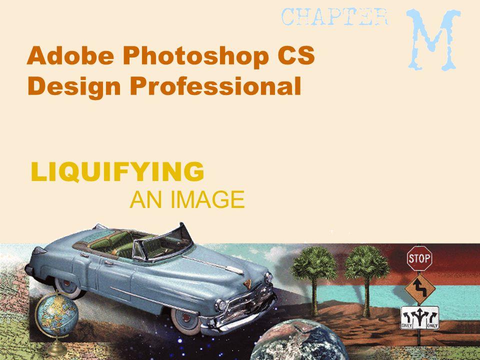 Adobe Photoshop CS Design Professional AN IMAGE LIQUIFYING