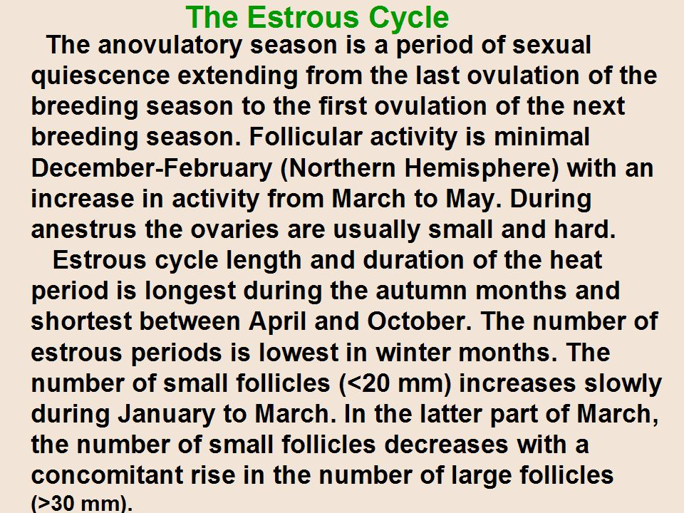 The anovulatory season is a period of sexual quiescence extending from the last ovulation of the breeding season to the first ovulation of the next breeding season.