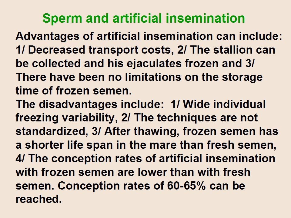 Advantages of artificial insemination can include: 1/ Decreased transport costs, 2/ The stallion can be collected and his ejaculates frozen and 3/ There have been no limitations on the storage time of frozen semen.