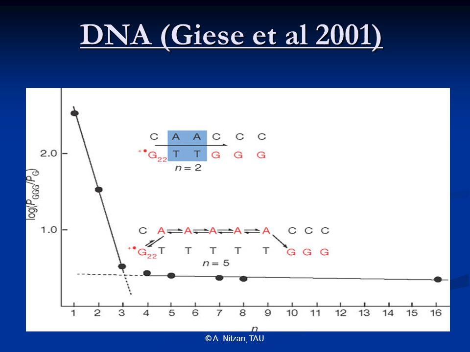 © A. Nitzan, TAU DNA (Giese et al 2001)