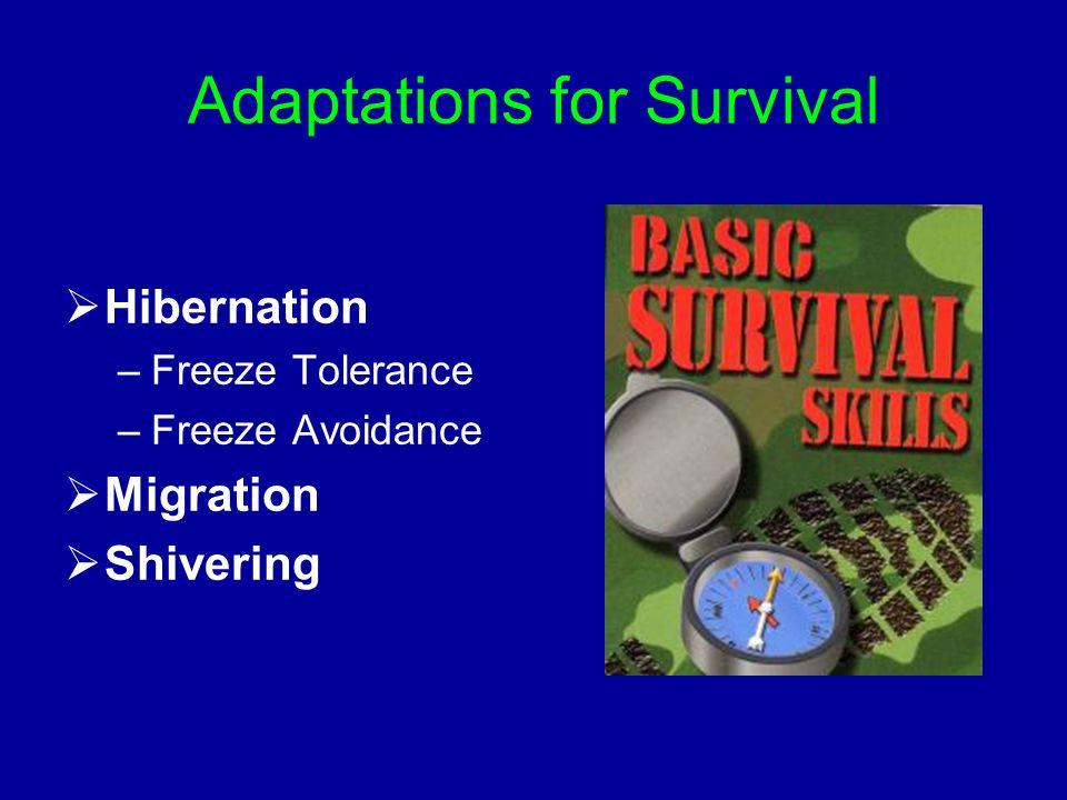Adaptations for Survival  Hibernation –Freeze Tolerance –Freeze Avoidance  Migration  Shivering