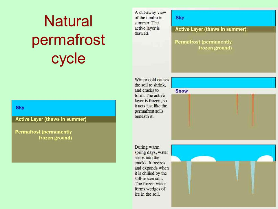 Natural permafrost cycle