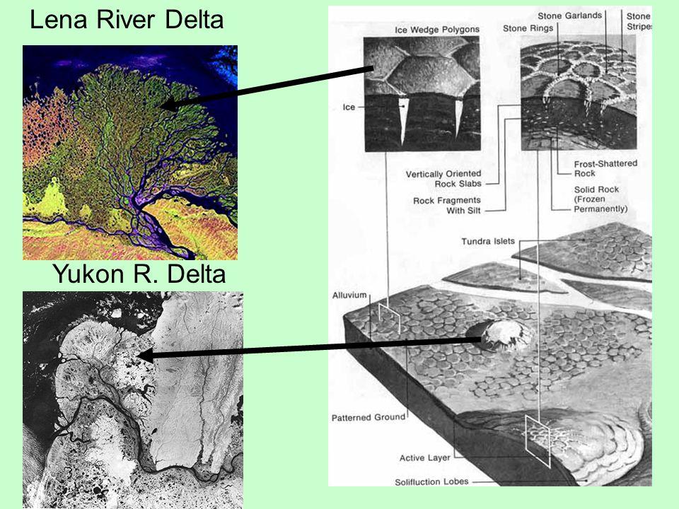 Lena River Delta Yukon R. Delta