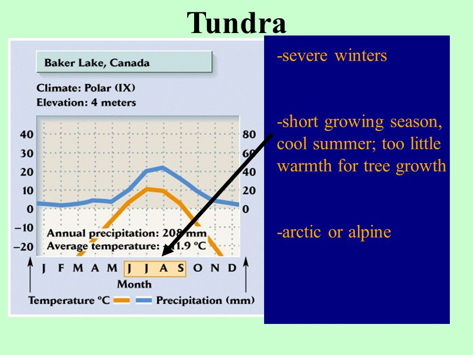 -severe winters -short growing season, cool summer; too little warmth for tree growth -arctic or alpine Tundra