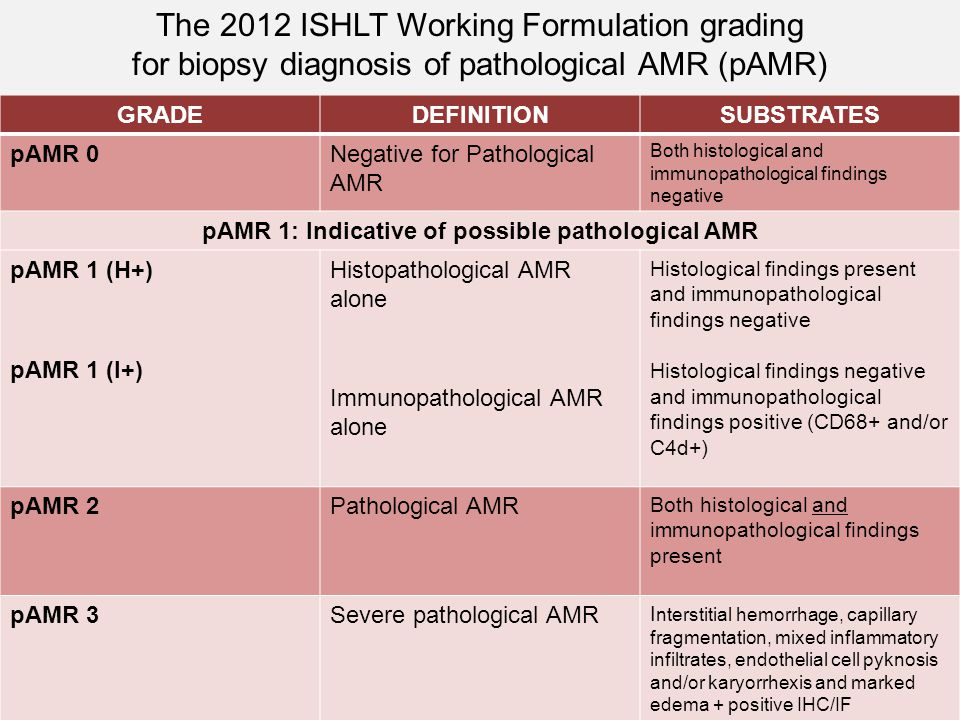 GRADEDEFINITIONSUBSTRATES pAMR 0Negative for Pathological AMR Both histological and immunopathological findings negative pAMR 1: Indicative of possibl