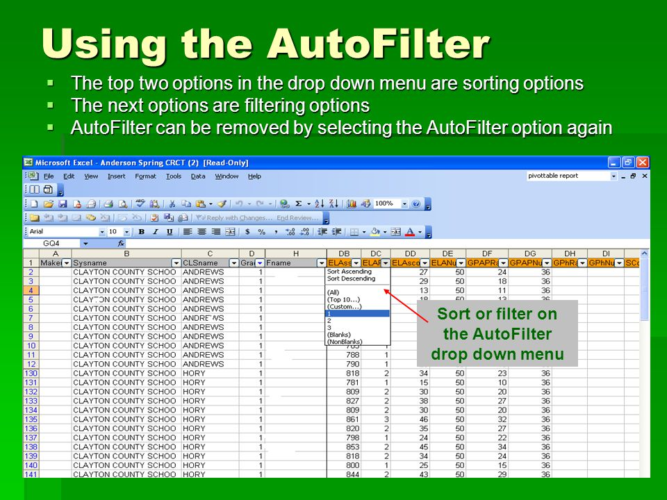 Using the AutoFilter  The top two options in the drop down menu are sorting options  The next options are filtering options  AutoFilter can be removed by selecting the AutoFilter option again Sort or filter on the AutoFilter drop down menu