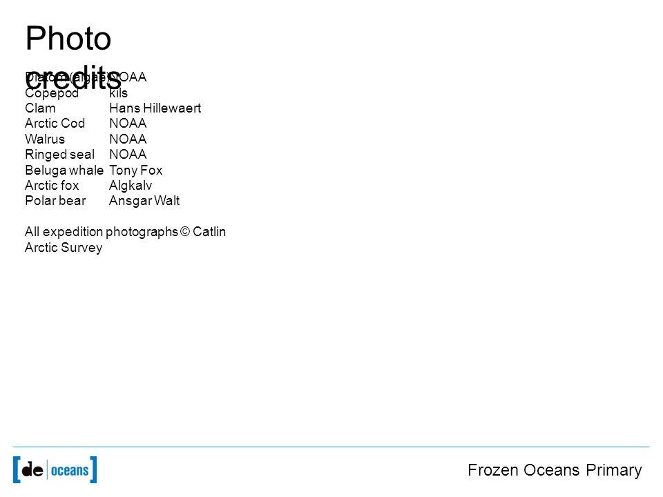 Frozen Oceans Primary Photo credits Diatom (algae)NOAA Copepodkils ClamHans Hillewaert Arctic CodNOAA WalrusNOAA Ringed sealNOAA Beluga whaleTony Fox Arctic foxAlgkalv Polar bearAnsgar Walt All expedition photographs © Catlin Arctic Survey