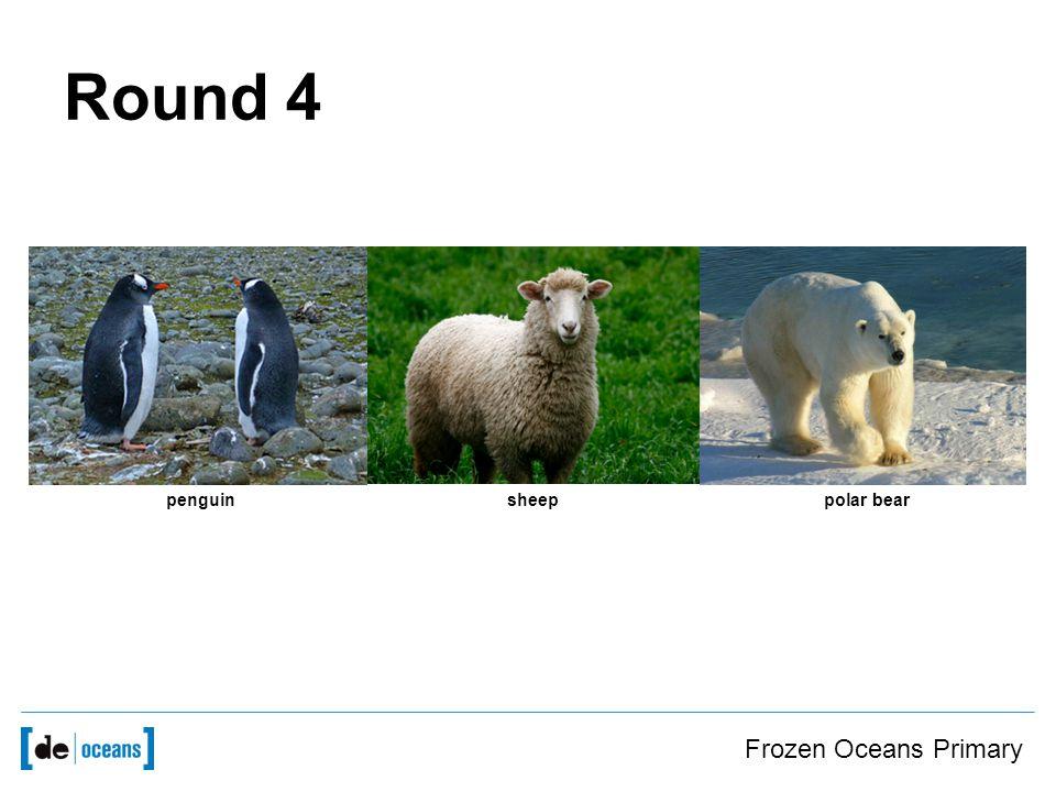 Frozen Oceans Primary penguinsheeppolar bear Round 4