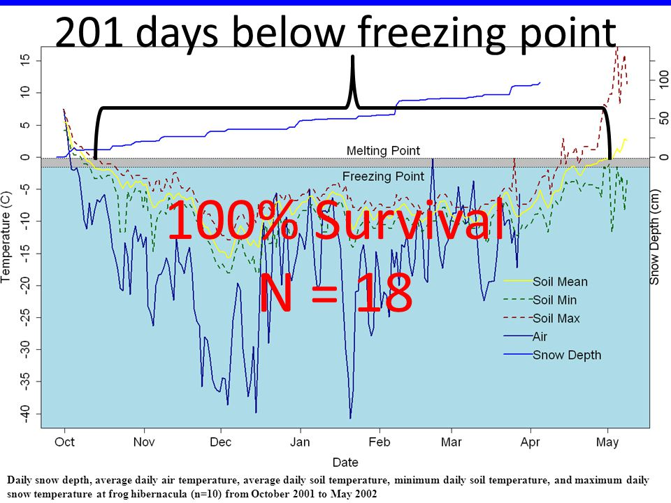 100% Survival N = 18 Daily snow depth, average daily air temperature, average daily soil temperature, minimum daily soil temperature, and maximum dail