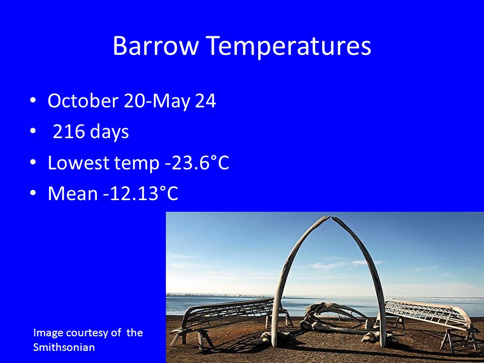 Barrow Temperatures October 20-May 24 216 days Lowest temp -23.6°C Mean -12.13°C Image courtesy of the Smithsonian