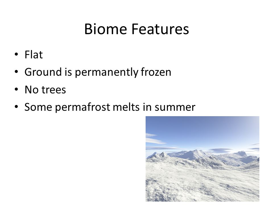 Biome Features Flat Ground is permanently frozen No trees Some permafrost melts in summer