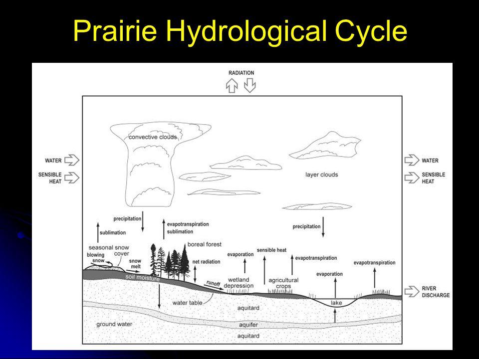 Prairie Hydrological Cycle