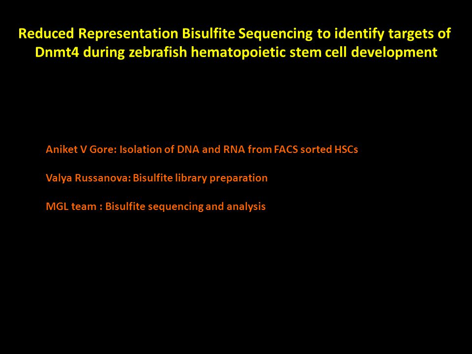 Reduced Representation Bisulfite Sequencing to identify targets of Dnmt4 during zebrafish hematopoietic stem cell development Aniket V Gore: Isolation