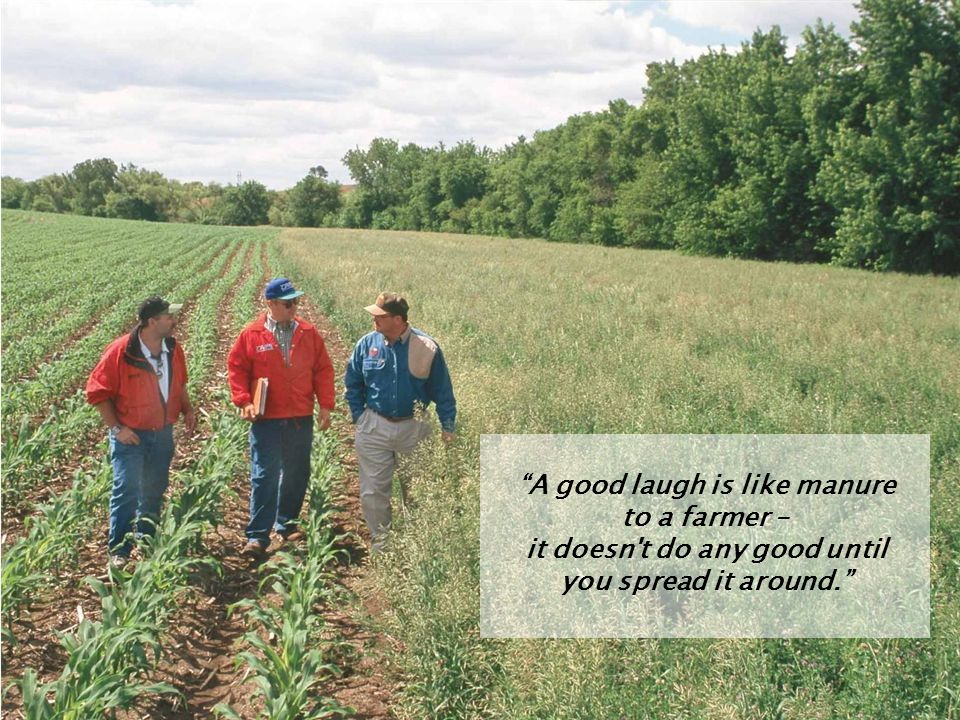 A good laugh is like manure to a farmer – it doesn t do any good until you spread it around.
