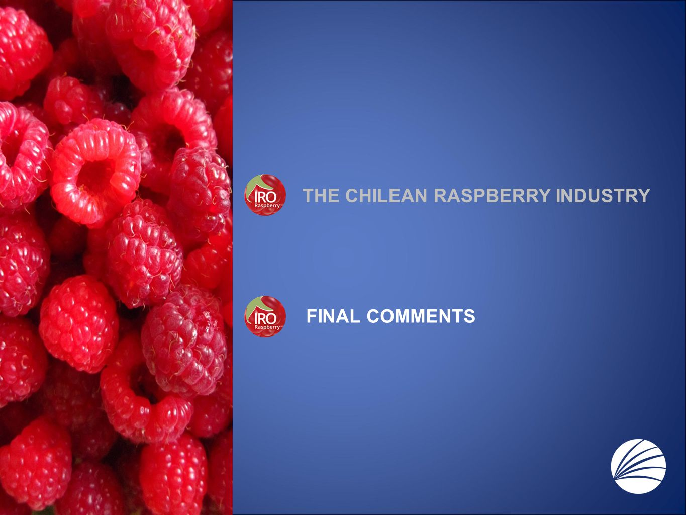 THE CHILEAN RASPBERRY INDUSTRY FINAL COMMENTS