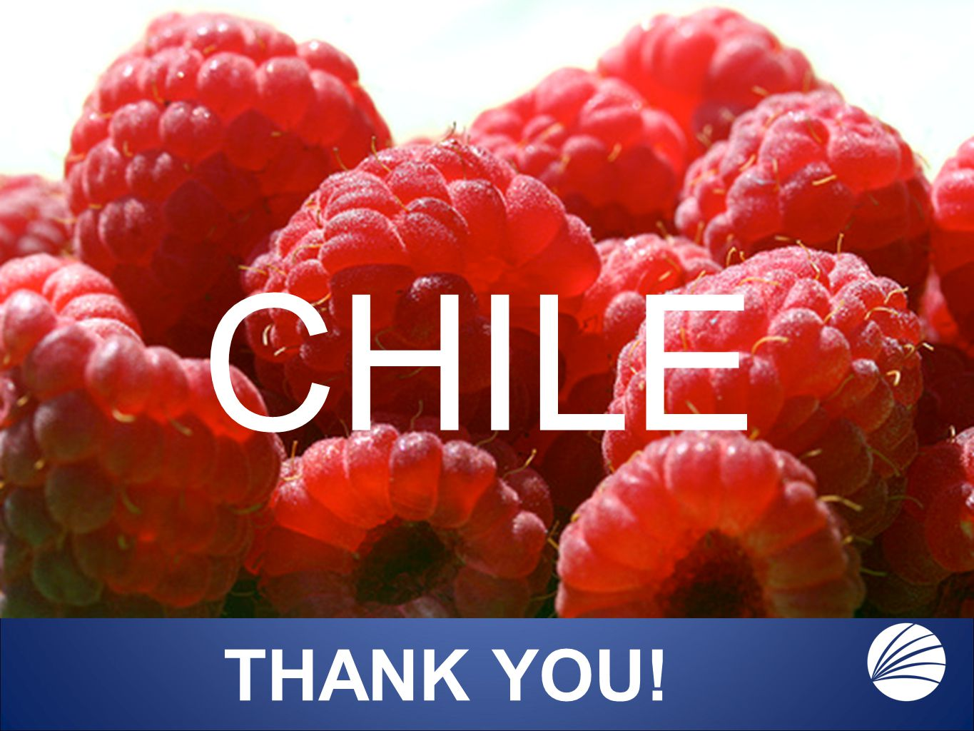 THANK YOU! CHILE