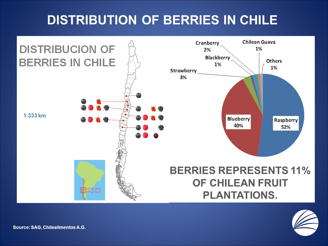 DISTRIBUTION OF BERRIES IN CHILE Source: SAG, Chilealimentos A.G. BERRIES REPRESENTS 11% OF CHILEAN FRUIT PLANTATIONS.