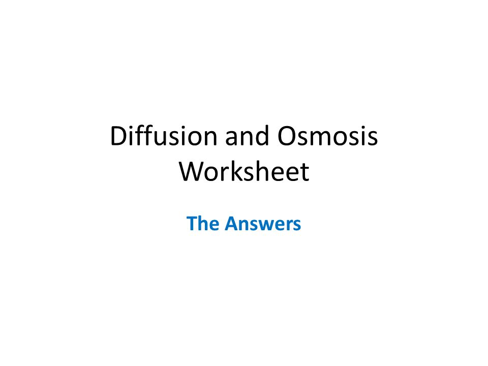 Diffusion and Osmosis Worksheet The Answers