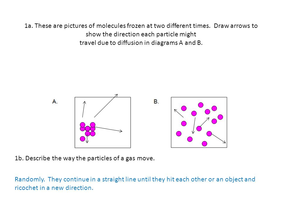 1b. Describe the way the particles of a gas move. Randomly. They continue in a straight line until they hit each other or an object and ricochet in a