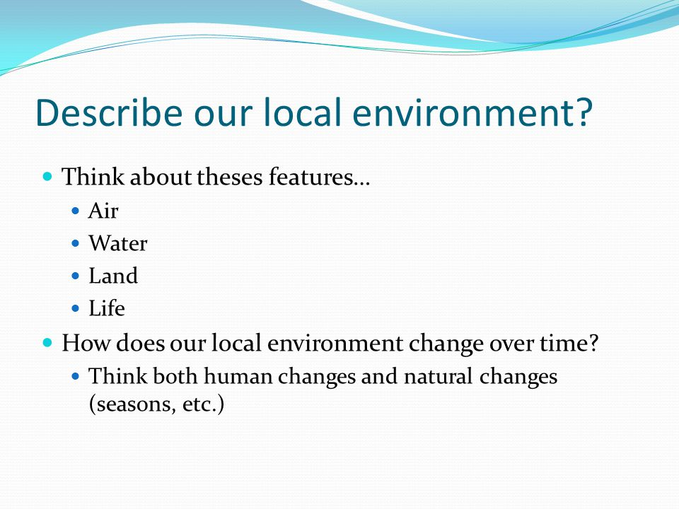 Describe our local environment.