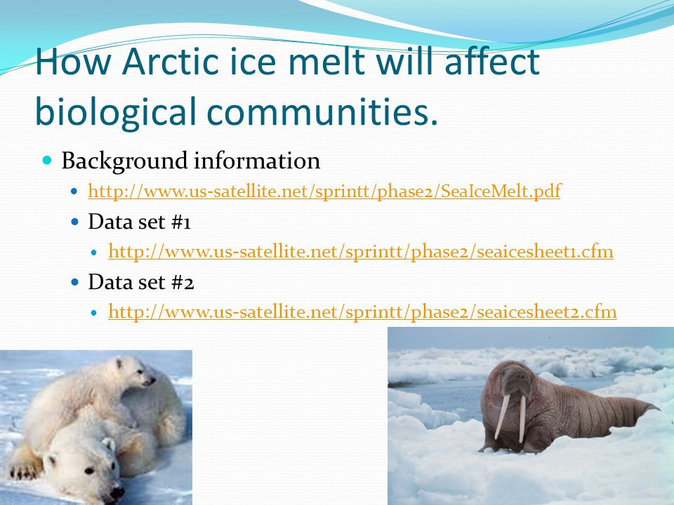 How Arctic ice melt will affect biological communities.