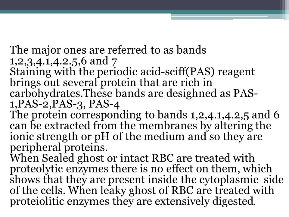 The major ones are referred to as bands 1,2,3,4.1,4.2.5,6 and 7 Staining with the periodic acid-sciff(PAS) reagent brings out several protein that are rich in carbohydrates.These bands are desighned as PAS- 1,PAS-2,PAS-3, PAS-4 The protein corresponding to bands 1,2,4.1,4.2,5 and 6 can be extracted from the membranes by altering the ionic strength or pH of the medium and so they are peripheral proteins.