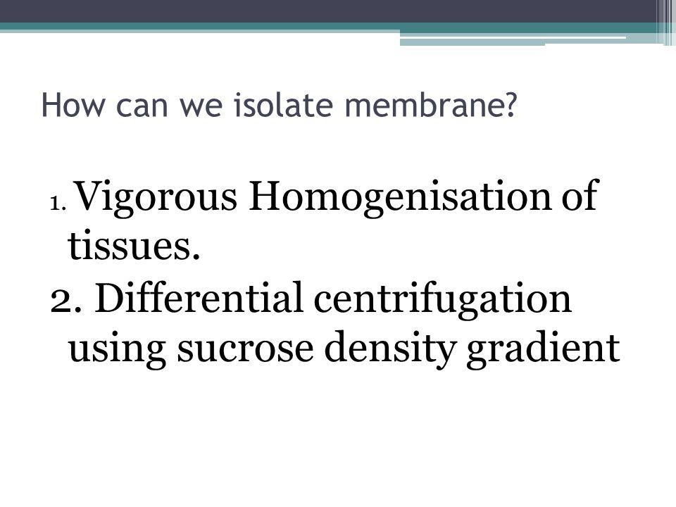How can we isolate membrane. 1. Vigorous Homogenisation of tissues.