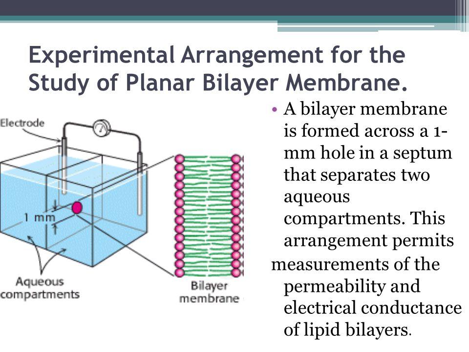 Experimental Arrangement for the Study of Planar Bilayer Membrane.