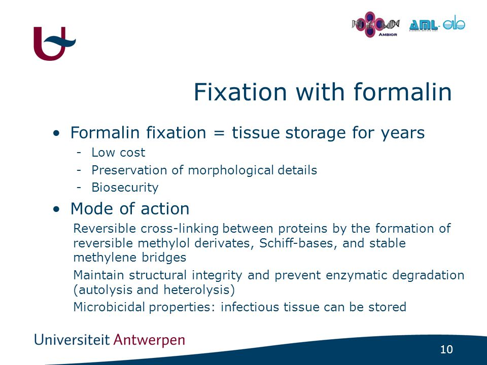 10 - Fixation with formalin Formalin fixation = tissue storage for years -Low cost -Preservation of morphological details -Biosecurity Mode of action Reversible cross-linking between proteins by the formation of reversible methylol derivates, Schiff-bases, and stable methylene bridges Maintain structural integrity and prevent enzymatic degradation (autolysis and heterolysis) Microbicidal properties: infectious tissue can be stored