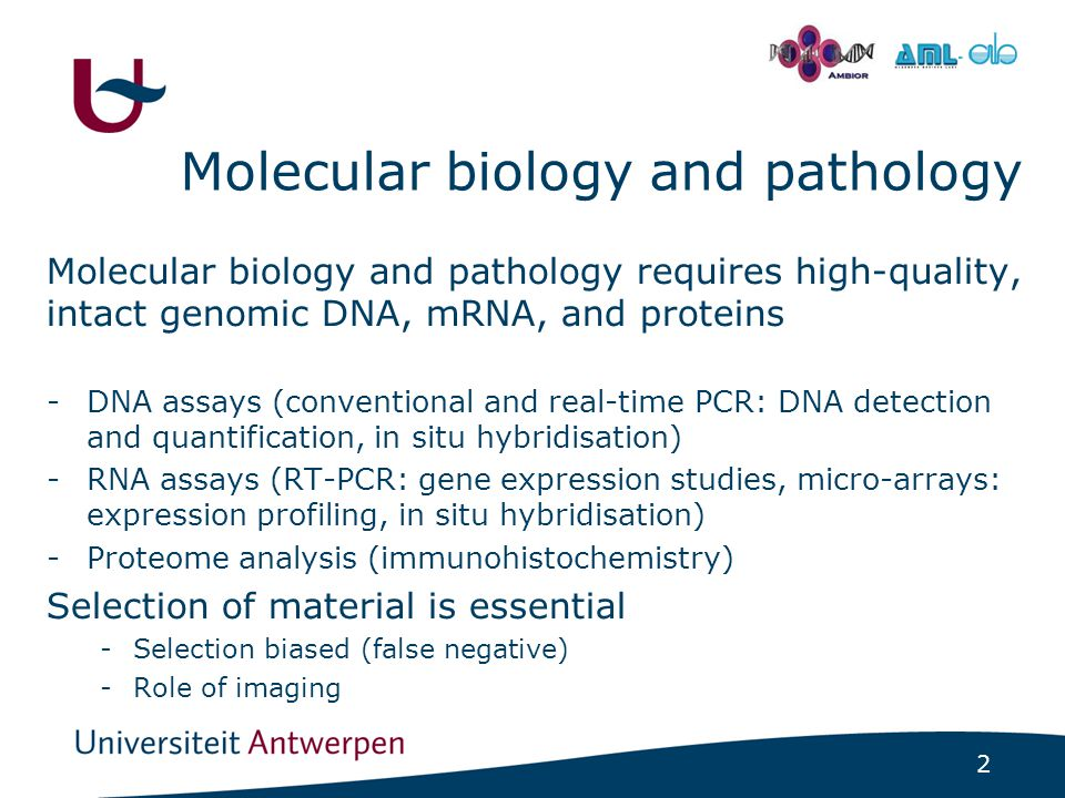 2 - Molecular biology and pathology Molecular biology and pathology requires high-quality, intact genomic DNA, mRNA, and proteins -DNA assays (conventional and real-time PCR: DNA detection and quantification, in situ hybridisation) -RNA assays (RT-PCR: gene expression studies, micro-arrays: expression profiling, in situ hybridisation) -Proteome analysis (immunohistochemistry) Selection of material is essential -Selection biased (false negative) -Role of imaging