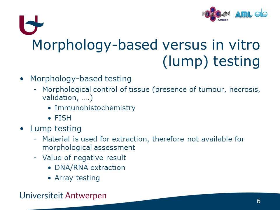 6 - Morphology-based versus in vitro (lump) testing Morphology-based testing -Morphological control of tissue (presence of tumour, necrosis, validation, ….) Immunohistochemistry FISH Lump testing -Material is used for extraction, therefore not available for morphological assessment -Value of negative result DNA/RNA extraction Array testing