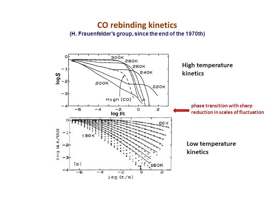 CO rebinding kinetics (H.