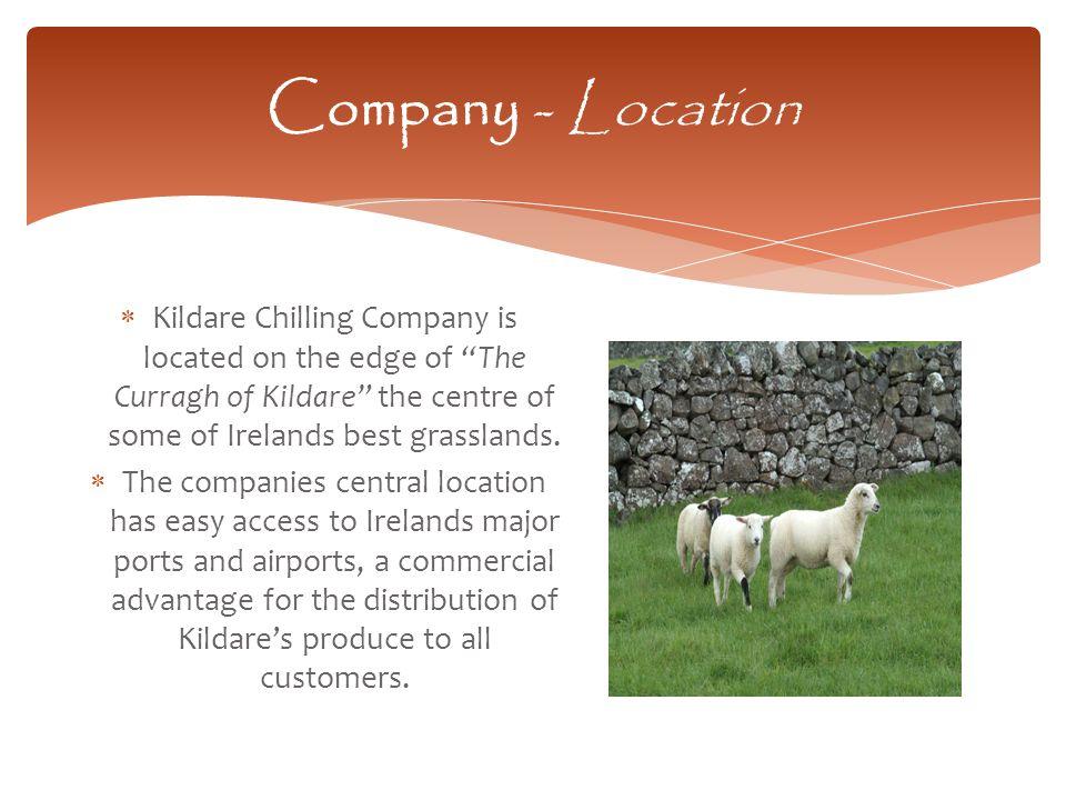 Company – Sales Specs - Lamb – Centre loins B/Less Loin PAD Chilled, 4 pcs per vp bag Lamb Fillets Vp Tied B/Less Lamb C/Loin