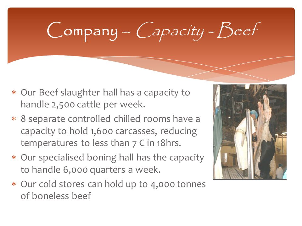  Our Beef slaughter hall has a capacity to handle 2,500 cattle per week.