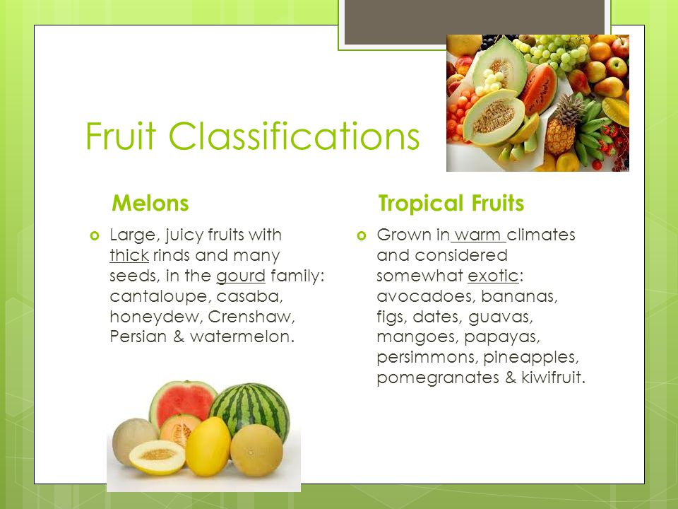 Fruit Classifications Melons  Large, juicy fruits with thick rinds and many seeds, in the gourd family: cantaloupe, casaba, honeydew, Crenshaw, Persian & watermelon.
