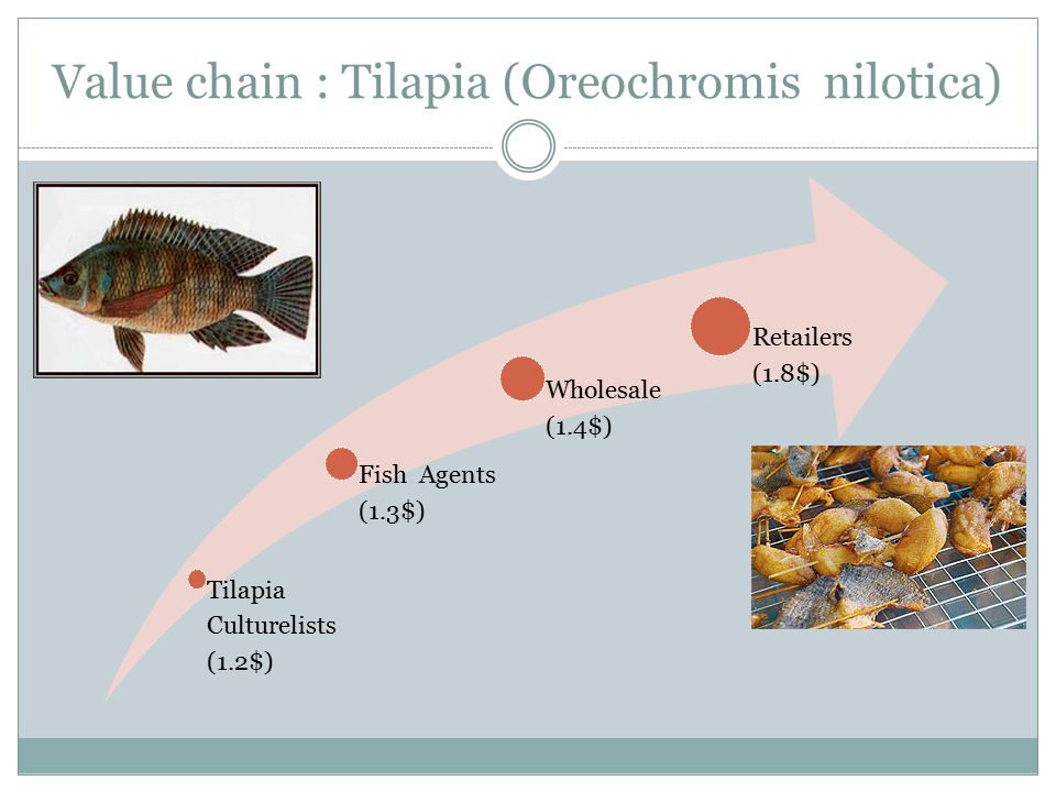 Value chain : Tilapia (Oreochromis nilotica) Tilapia Culturelists (1.2$) Fish Agents (1.3$) Wholesale (1.4$) Retailers (1.8$)