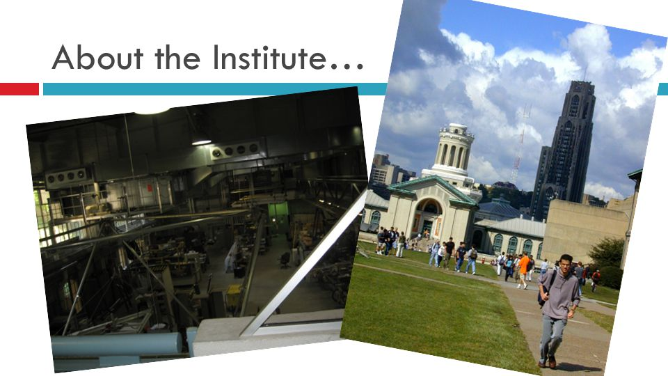 About the Institute…